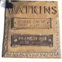 James David Watkins