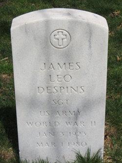 James Leo Despins