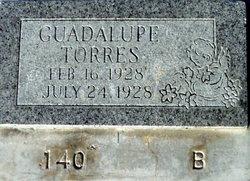 Guadalupe Torres