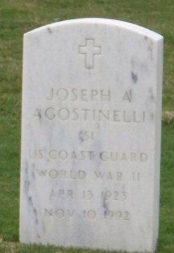 Joseph A Agostinelli
