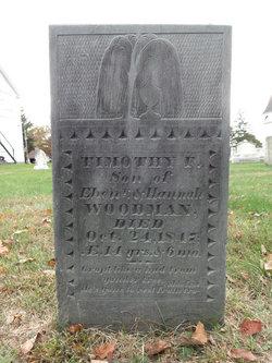 Timothy F. Woodman
