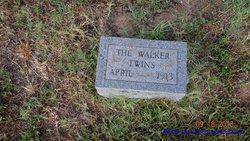 Infant Twin Walker