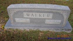 Sallie Elizabeth <I>Holley</I> Walker
