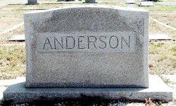 Willie Excel <I>Morris</I> Anderson