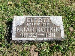 Electa Ann Botkin