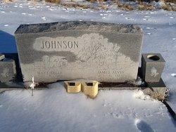James Alvin Johnson