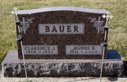 Agnes Regina <I>Montag</I> Bauer