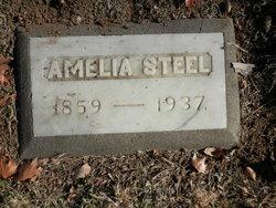 Amelia Steel