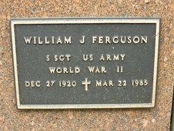 William J Ferguson