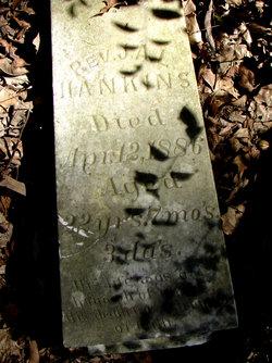 Rev J. A. L. Hankins