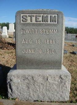 DeWitt Newton Stemm