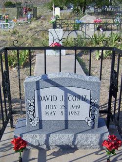 David J Coriz