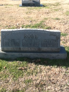 Dr Andrew Johnson Roby