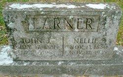 Mrs Nellie <I>DeVries</I> Larner
