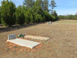 Powell Baptist Church Cemetery Extension