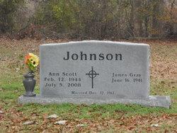 Ann Elizabeth <I>Scott</I> Johnson
