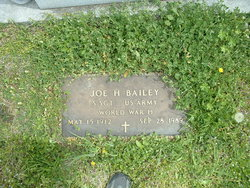 Joe H Bailey
