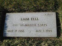 Liam Fell