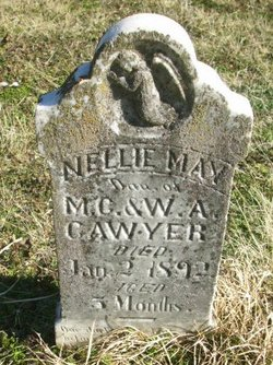 Nellie May Cawyer
