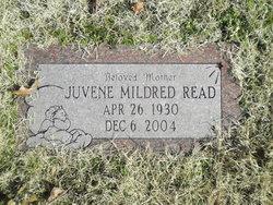 Juvene Mildred <I>Tompkins</I> Read