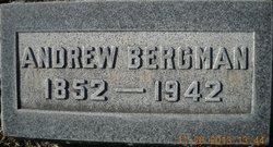 Andrew Bergman