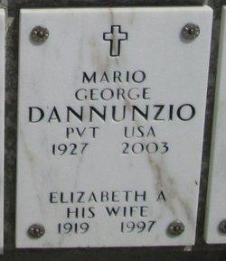 Elizabeth A D'Annunzio