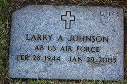 Larry A Johnson