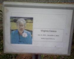 Virginia <I>Trujillo</I> Casaus