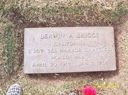 Derwin Alvin Briggs