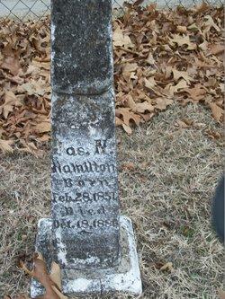 James N. Hamilton