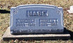 Lorenzo Fuller Mabe