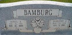 Dorothy J Bamburg