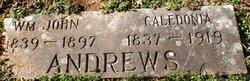 William John Andrews