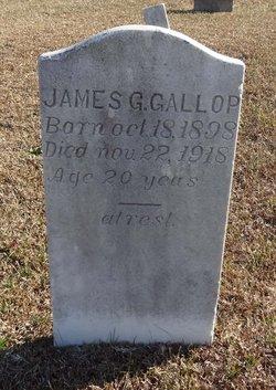 James G Gallop