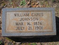 William Capus Johnson