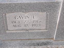 Gavin C James