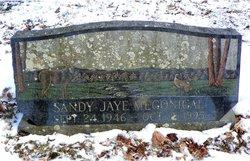 """Sandra Jaye """"Sandy"""" Megonigal"""