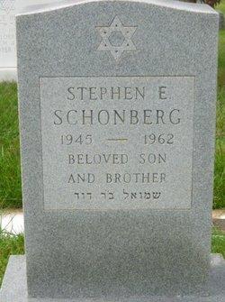 Stephen E Schonberg