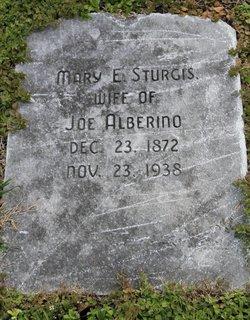 Mary Elizabeth <I>Sturgis</I> Alberino