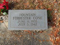 Fountain Forrester Cone