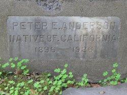 Peter Edwin Anderson