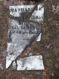 Mary Catherine <I>Womer</I> Baughman