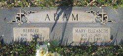Mary Elizabeth Adam