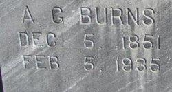Amos Gaston Burns