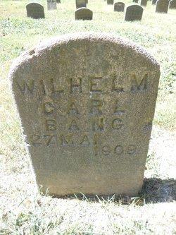 Wilhelm Carl Bang