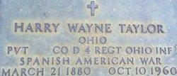 Harry Wayne Taylor