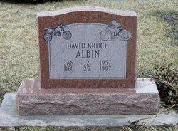 David Bruce Albin