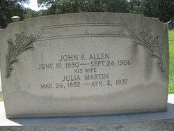 Julia Ann <I>Martin</I> Allen