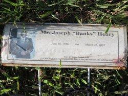 """Joseph """"Banks"""" Henry"""