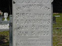 """Sibel """"Civility"""" <I>Hickox</I> Andrews"""